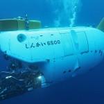 深海を見に行こう! 新江の島水族館