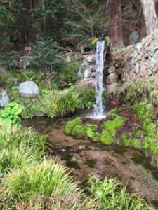 八ヶ岳湧水2