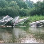 夏の川遊び!鮎の投網漁